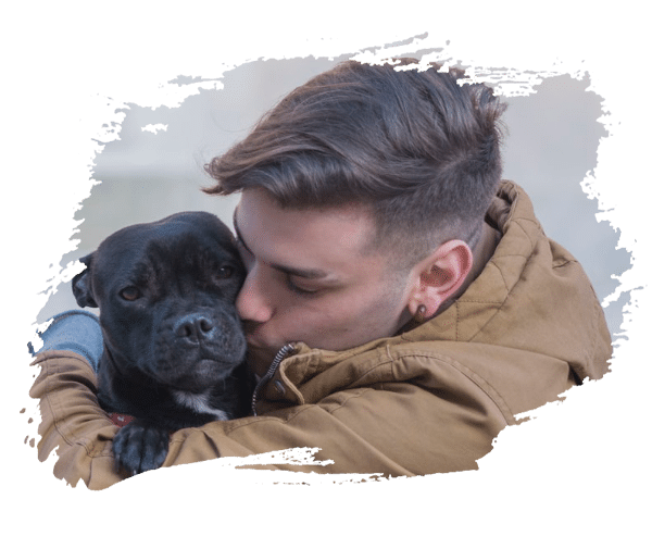 Fish Oil Based Supplements for Dogs Frequently Asked Questions