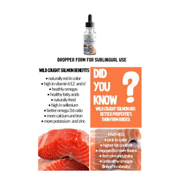 wild caught salmon oil for dogs