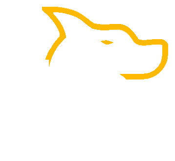 K9 Oil Supplements USA Made CBD for Pets