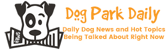 daily dog news and hot topics being talked about right now
